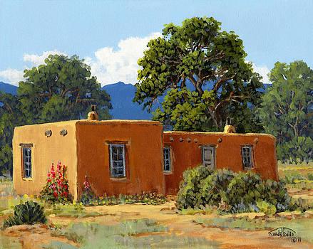 New Mexico Adobe by Randy Follis