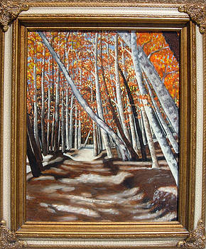 New Mexico Aspens by Annette Jimerson