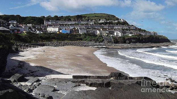 New Quay Beach by John Williams