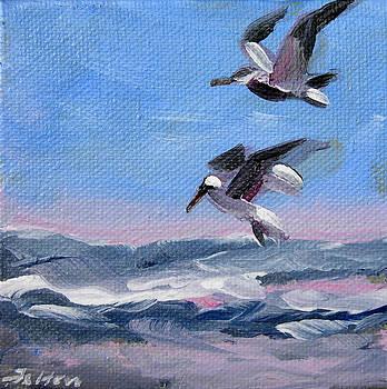Seabirds over the ocean by Julianne Felton