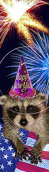 Jeanette K - New Year Raccoon # 515