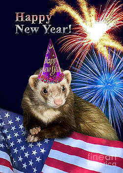 Jeanette K - New Years Ferret