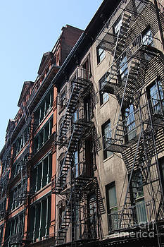 New York Apartments  by Max  Greene