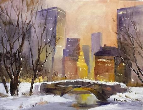 New York Central Park by Larry Hamilton