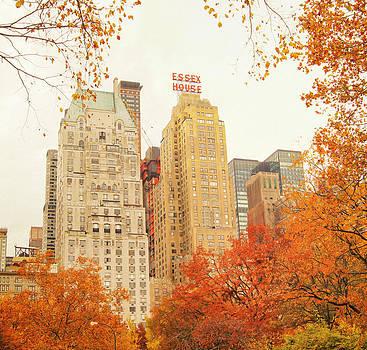 New York City - Autumn - Central Park Foliage by Vivienne Gucwa