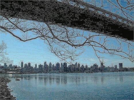 New York City Triborough Bridge by Ricardo  De Almeida