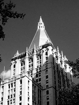 New York Life Insurance Tower by Liza Dey
