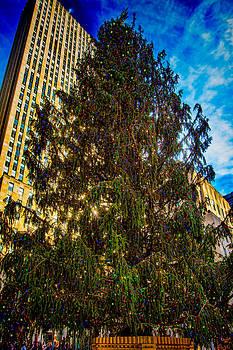 Chris Lord - New York