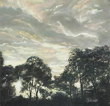 New Zealand Clouds by Trish Bilich
