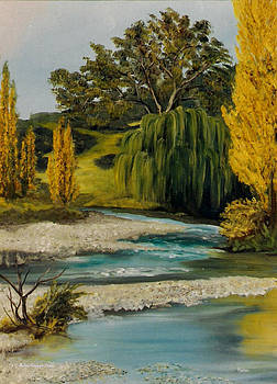 New Zealand Stream by Rulan Capper-Starr