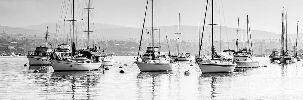 Paul Velgos - Newport Beach Harbor Boats Panorama Photo