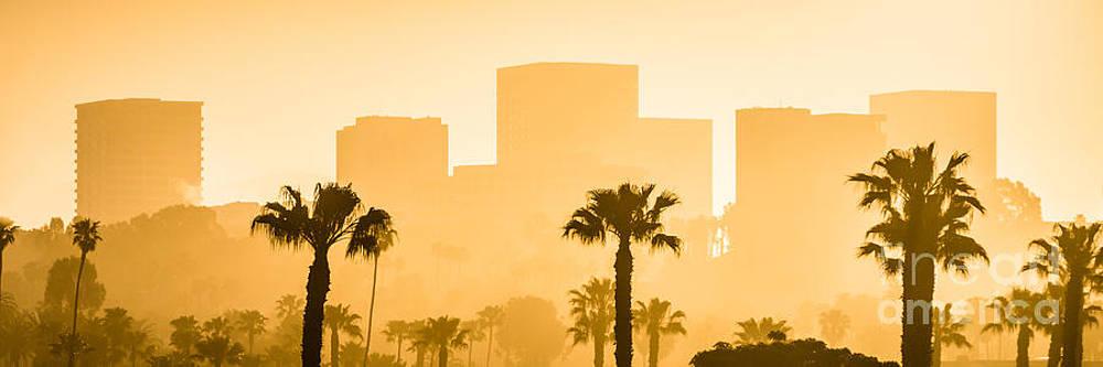 Paul Velgos - Newport Beach Skyline Panorama Picture