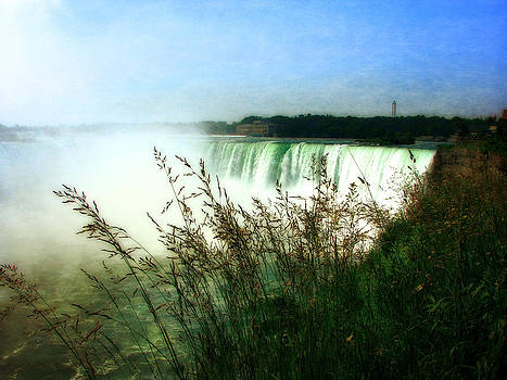 Michelle Calkins - Niagara Falls with Grasses