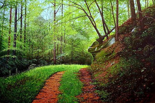 Nicol Walk by Wayne Fair