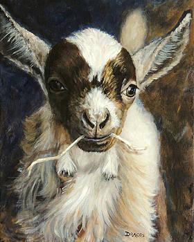 Nigerian Dwarf Goat with Straw by Dottie Dracos