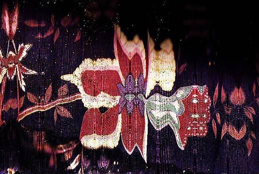 Anne-Elizabeth Whiteway - Night Bloomer