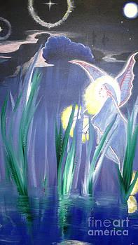 Night Fairy by Catherine Visconte