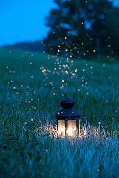 Night Lantern by David Heger