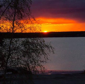 Night Sky Fire by Valerie Pond