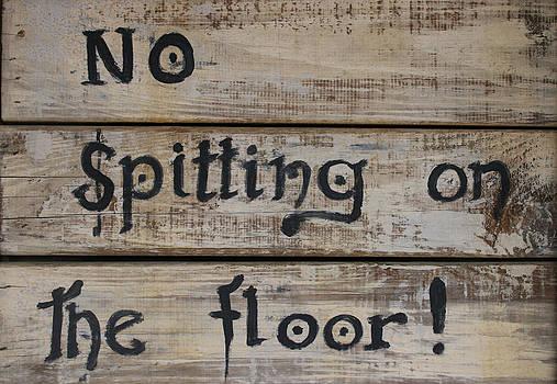 Kathy Peltomaa Lewis - No Spitting On The Floor