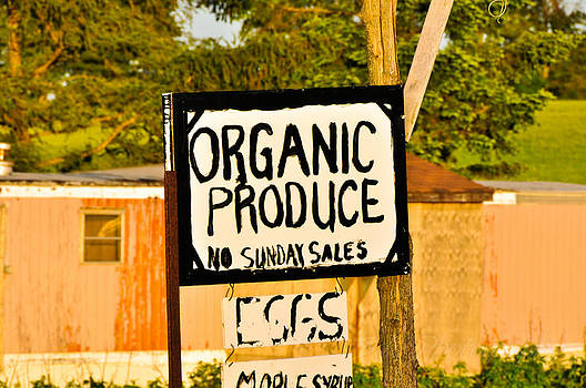 No Sunday Sales by BandC  Photography