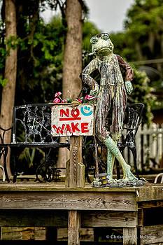 Christopher Holmes - No Wake