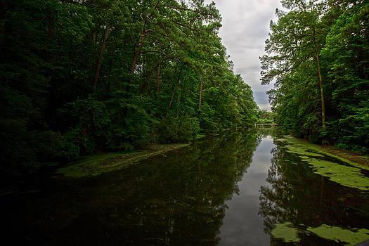 Regina  Williams  - Noland Trail Bridge 3