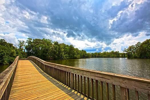 Regina  Williams  - Noland Trail Bridge