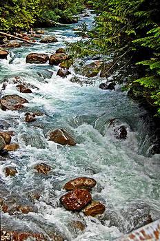 Nooksack River by Randall Templeton