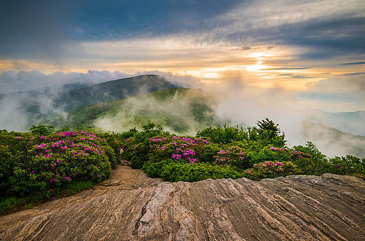 North Carolina Appalachian Trail Spring Blue Ridge Mountains by Dave Allen