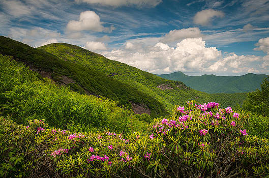 North Carolina Blue Ridge Parkway Craggy Gardens by Dave Allen