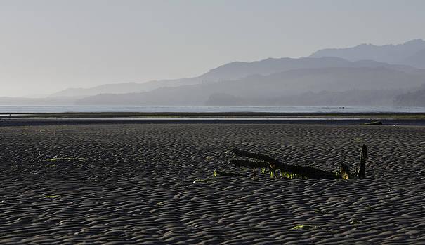 North Horizon by Chad Davis