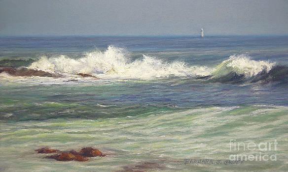North Shore Waves by Barbara Groff