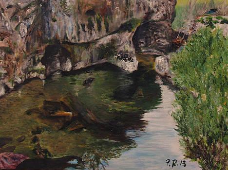 North Spain river by Pedro Riera