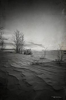 Northern Desert by Dustin Abbott
