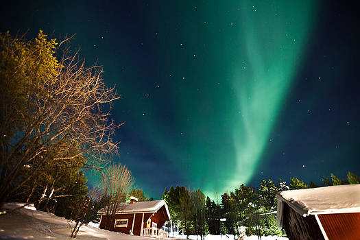 Northern light by Sitan Van Sluis