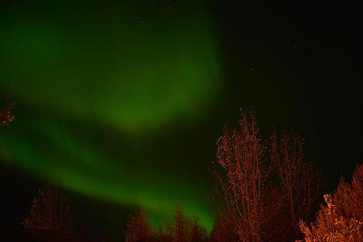 Northern lights over Iceland by Erlendur Gudmundsson