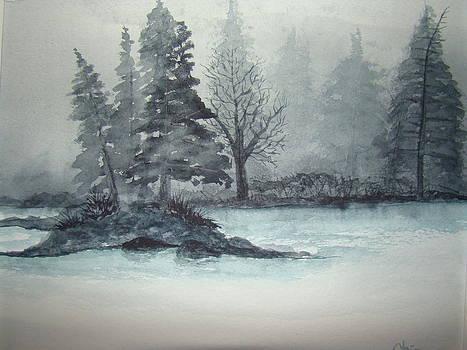 Northern Mist by Chip Picott