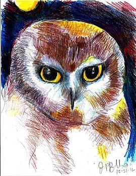 Jon Baldwin  Art - Northern Saw Whet Owl