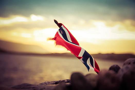 Norwegian Flaf by Anne Macdonald