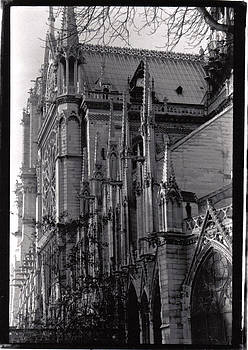 Notre Dame Cathedral by James Reynolds