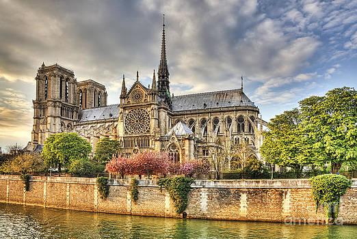 Notre Dame de Paris Cathedral by Radu Razvan