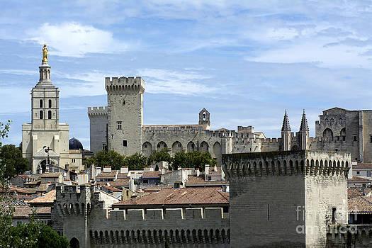 BERNARD JAUBERT - Notre-Dame-des Doms cathedral and Palais des Papes. Avignon. France