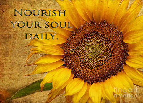 Nourish Your Soul by Erika Weber