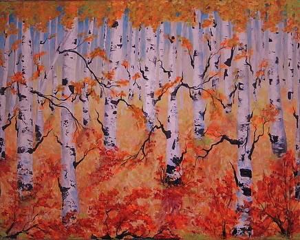 Nova Scotia Birches by Anne Marie Spears