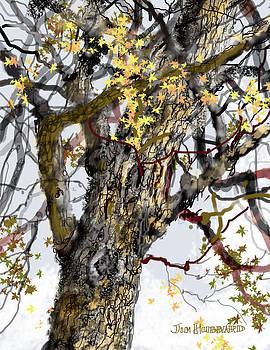 Jim Hubbard - November Leaves