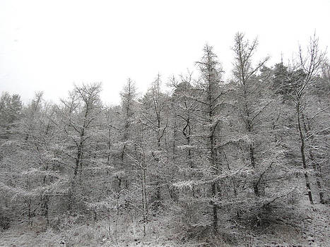 November Storm by Azthet Photography