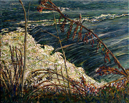 November Suite 6 View of the Rapids by Jonathan E Raddatz