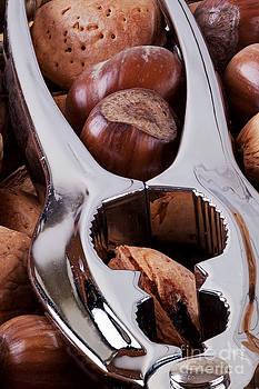 Simon Bratt Photography LRPS - Nutcracker with nuts closeup
