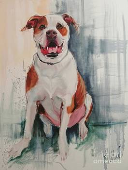 NYC Pitbull by Pet Whimsy  Portraits